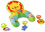 Fisher-Price Y6593 - Spielkissen, mit abnehmbaren Beißringen und Spielzeug, Baby Spielzeug ab Geburt