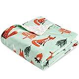 Boritar Fox Babydecke Weich Decke Minky mit doppelter gepunkteter Rückseite Warme Weiche Ultra Soft...