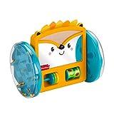Fisher-Price GJW14 - Rollender Igel-Spiegel, Spielzeug zum Spielen in der Bauchlage und zum Krabbeln