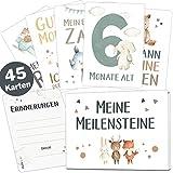 45 Baby Meilensteinkarten Lino für Junge und Mädchen Meilenstein Karten Set + Geschenkbox schöne...