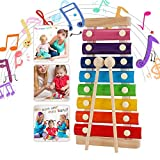 WELLXUNK Xylophon für Kinder, perfekt für kleine Musiker, Holzspielzeug Musikinstrument, Schlaginstrument mit Metalltasten aus Holz (Regenbogenfarben)
