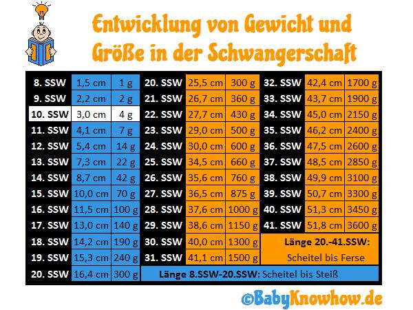 SSW 10 Gewichtszunahme Größe