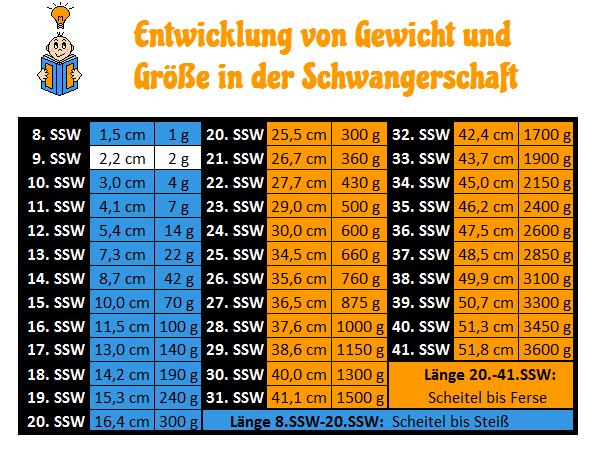 9. SSW - Gewichtszunahme und Größe