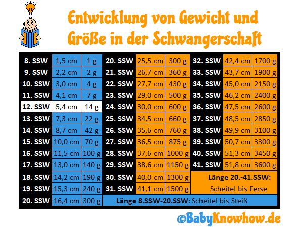SSW 12 Größe und Gewichtszunahme