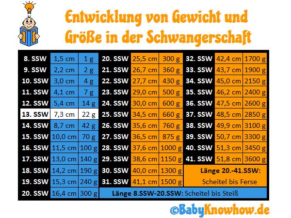 SSW 13 Größe Gewichtszunahme
