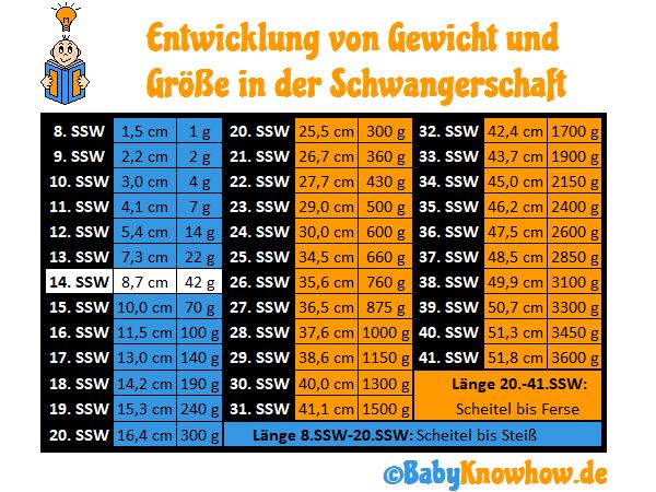 SSW 14: Größe und Gewichtszunahme