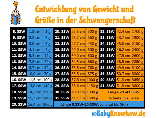 SSW 16 Größe Gewichtszunahme