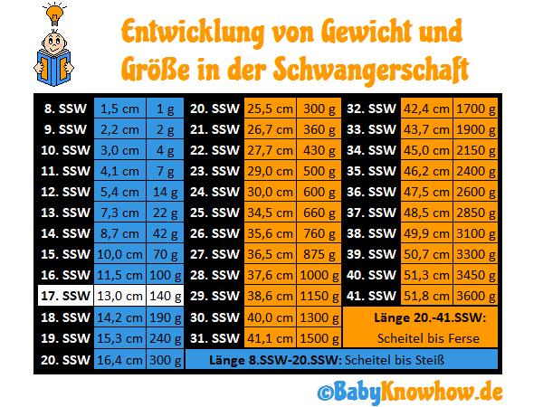 SSW 17 Größe Gewichtszunahme