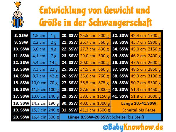 SSW 18 Größe Gewichtszunahme