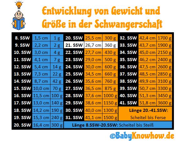 SSW 21 Größe Gewichtszunahme
