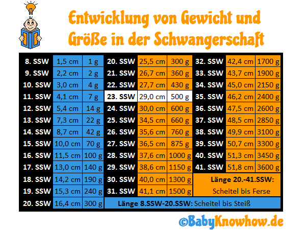 23. SSW: Größe Gewichtszunahme