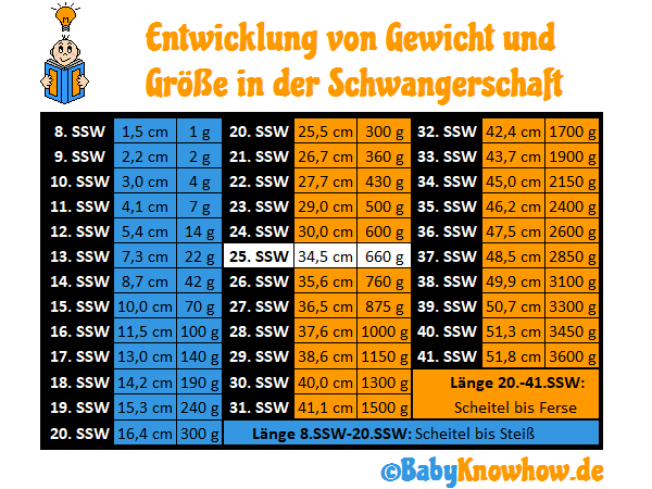 25. SSW Größe Gewichtszunahme