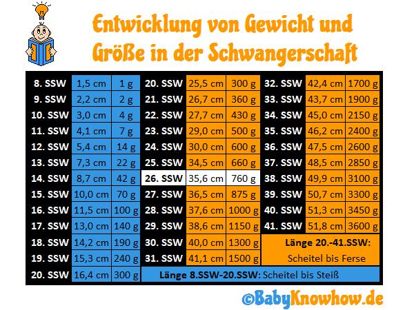 26. SSW Größe Gewichtszunahme
