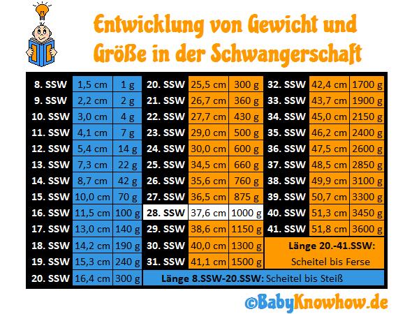 28. SSW Größe Gewichtszunahme