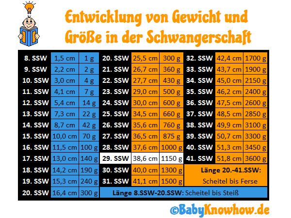 29. SSW Größe Gewichtszunahme