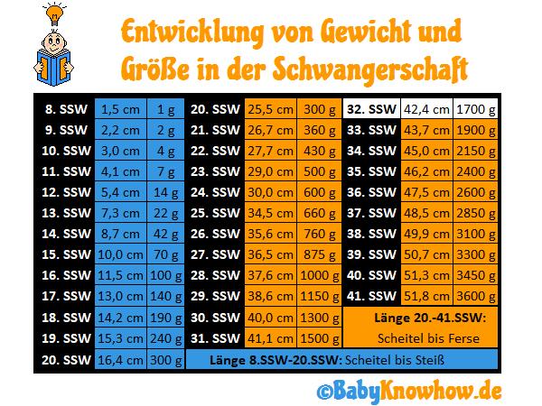 32. SSW Größe Gewichtszunahme
