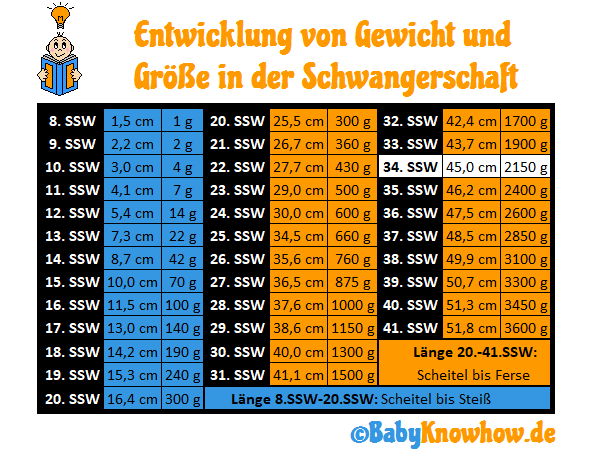 34. SSW Größe Gewichtszunahme