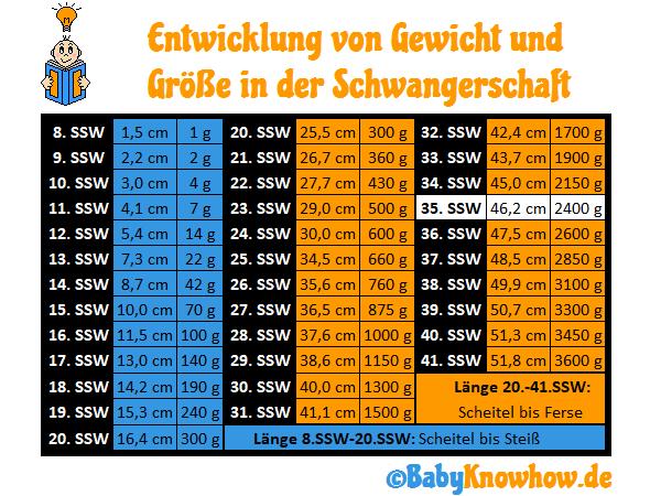 35. SSW Größe Gewichtszunahme