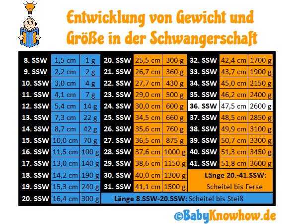 36. SSW Größe Gewichtszunahme