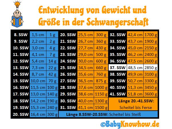 37. SSW Größe Gewichtszunahme