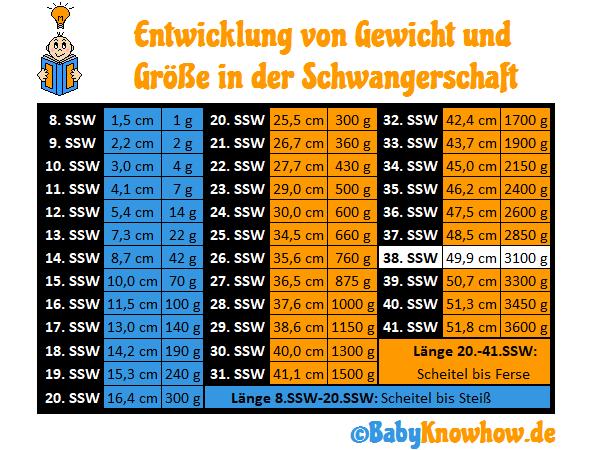 38. SSW Größe Gewichtszunahme
